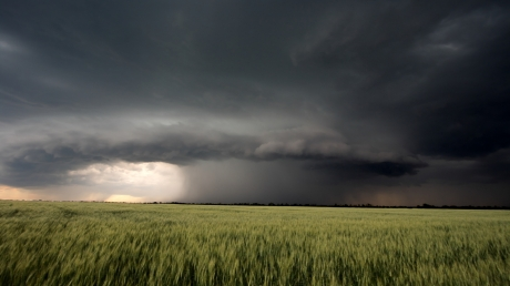 Ураган страшной силы едва не унес детей в Черниговской области