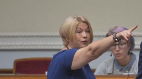 геращенко, парламент, конфликт, скандал, Разумков, Юрий Бирюков
