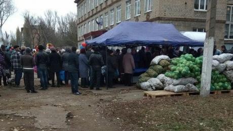"""Всю суть """"выборов"""" в Донецке и Луганске показали несколькими снимками: """"победила"""" картошка и капуста - кадры"""