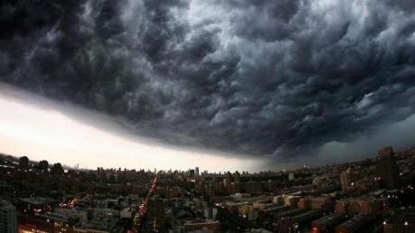 конец света, апокалипсис, вымирание, земля, природа, катастрофа, когда конец света, 100 лет, насекомые, человечество