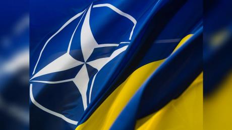 Украина и НАТО: Министерство обороны подало важную заявку