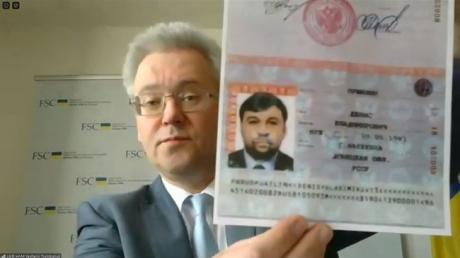паспорт россии, обсе, пушилин, днр, лнр, дейнего, россия, никанорова, украина