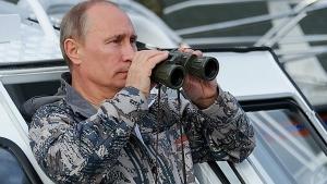 россия, сша, путин, общество, происшествия