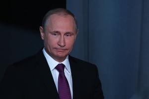 путин, пургин, меркель, олланд, донбасс, политика, россия, украина, днр