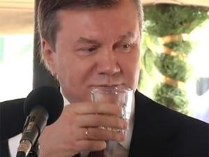 Межигорье, элитный алкоголь, Виктор Янукович, Евгений Чичваркин, Лондон, новости Украины