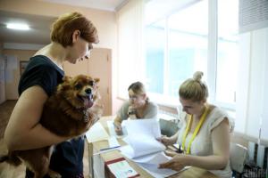 Украина, Закарпатская область, Венгрия, Выборы, Результат.