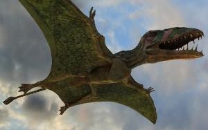 ящерица, ученые, монголия, небо, хищник, птерозавры, рептилия