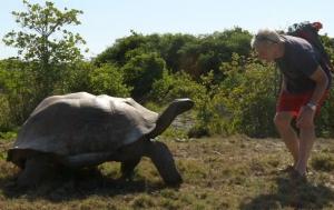 сейшельские острова, гигантские черепахи, экспедиция