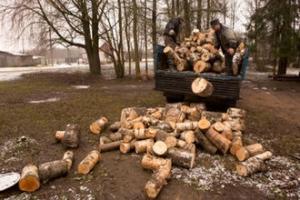 Киев, люди запасаются дровами, цена на газ, Левкович