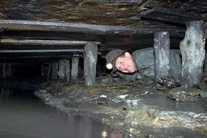 донбасс, ато, восток украины, происшествия, общество, днр, лнр, шахты