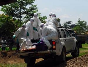 Китай,Эбола, эксперты, вирус, лихорадка, лечение