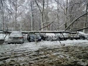 харьков, происшествия, непогода, стихия, мнег, восток украины