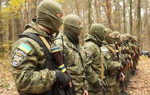 мвд украины, новости украины, происшествия. общество
