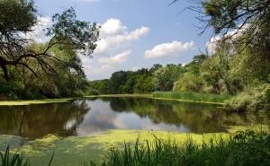 экология, природные ресурсы. реки, озера, водоемы, новости Украины