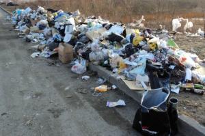 украина, крым, мусор, уборка, свалка, крысы, болезни, экологи, ибраимова, движение свободный крым, здоровь, оккупационные власти, меры, горный, отходы, ситуация, катастрофа