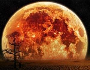 суперлуние, земля, луна, полнолуние, затмение, лунное