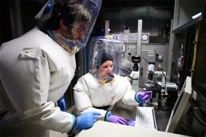 эбола, украина, вирус, лихорадка