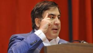 Саакашвили, гражданство, политика