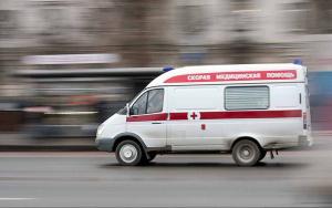 кот, животные, задушил, винницкая область, полиция, дети, девочка, мать, дочь, происшествия, смерти, новости украины