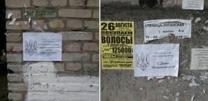 день независимости украины, первомайск, листовки, луганск, лнр, фото, донбасс, ато, новости украины