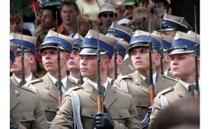 израиль, польша, армия израиля, армия польши, мельман, происшествия, общество