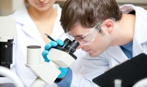 Эбола, вирус, лихорадка, США, случаи