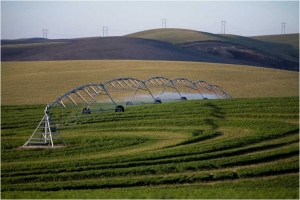 Украина, Николаев, общество, политика, сельское хозяйство, Минагропрод, урожай, полив, оросительные системы