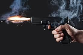 огнестрельное, оружие, законопроект, ношение, аваков, шокин, геращенко