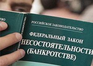 общество, политика, банкротство, россия