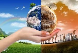 земля, планета, животные, фауна, насекомые, конец света, наука, ученые