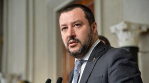 новости, Италия, Маттео Сальвини, покушение, украинская группировка, ложь, обвинения, Украина