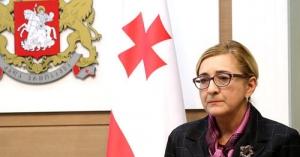 Тамара Беручашвили, иракли гарибашвили, грузия, мид грузии, украина ,политика