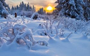 Кривой Рог, школьница, замерзла в снегу, происшествия, прогноз погоды
