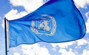 Юрий Сергеев, право вето РФ, Петр Порошенко, ООН, Совет безопасности