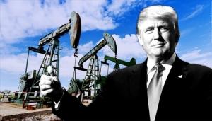 сша, нефть, черное золото, экономика, экспорт, энергоресурсы, топливо, россия, рф, кризис, цены на нефть