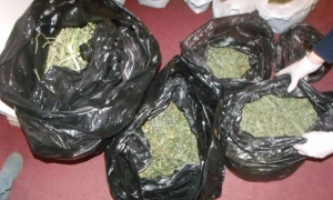 наркоторговля, киев, происшествия, общество, дилеры,наркопритон, мвд