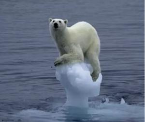 сша, ученые, глобальное потепление, температура