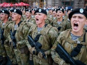 приветствие, военнослужащие, закон, журналистку, Скабееву, дисциплина, президент, лидер, украинский, Петр