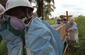 лихорадка Эбола, происшествия, общество, Африка