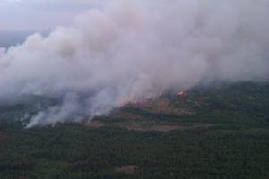 чернобыль, пожар, общество, происшествия