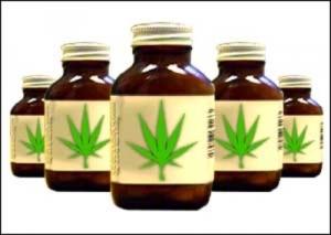 ваингтон, каннабис, марихуана