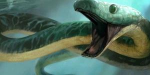 сцинк, кения, открытие, наука, находка, змея, рептилия