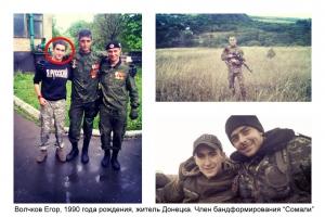 днр, донецк, общество, донбасс. ато, восток украины, происшествия, сомали, гиви