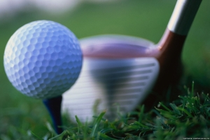 Тед Бишоп, пга, гольф, скандал