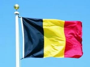бельгия, терроисты, общество