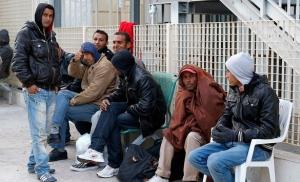 нелегалы, беженцы
