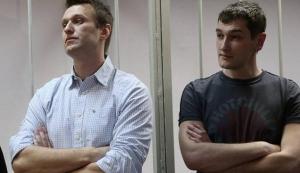 навальные, политика, премия, россия