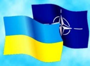 НАТО, Украина, Россия, политика, конфликт, существование, общество, Минобороны