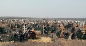 Чугуевский район, кладбище, хищение, вещдоки изъяты правоохранителями