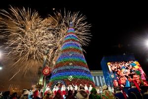 Полиция, Киев, Украина, Новый год, правопорядок,общество